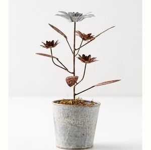 Aged iron potted daisies Nwt